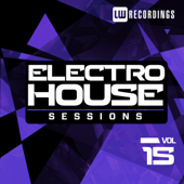 Electro House Sessions, Vol. 15