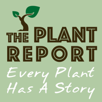 The Plant Report- Every Plant Has A Story podcast