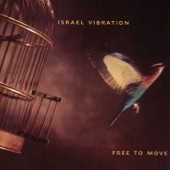 Israel Vibration - Another Day