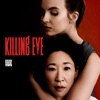 Killing Eve, Season 1 wiki, synopsis