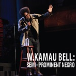 W. Kamau Bell - Finally Some Reverse Racism