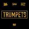 Trumpets (feat. Sean Paul) - Single - Sak Noel & Salvi