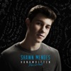 Handwritten (Revisited), Shawn Mendes