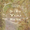 Oh I Wish You Were Here Single