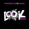 BlocBoy JB - Look Alive (feat. Drake) artwork