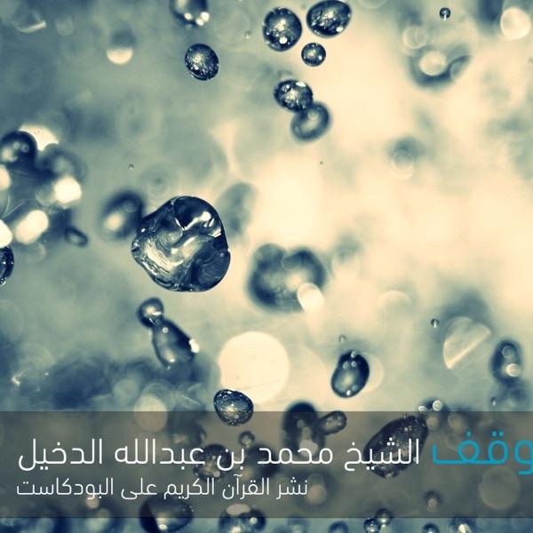 القرآن الكريم The Noble Quran