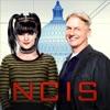 NCIS, Season 14 - Synopsis and Reviews