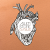 Allen Stone - Radius (Deluxe Edition)  artwork