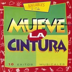 Mueve La Cintura (Move Your Body to the Havana Beat)