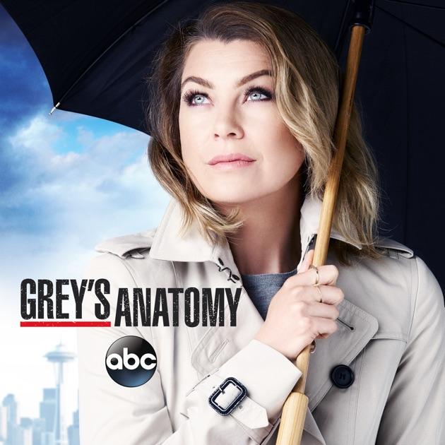 Greys Anatomy Season 12 On Itunes
