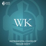 Instrumental Covers of Taylor Swift