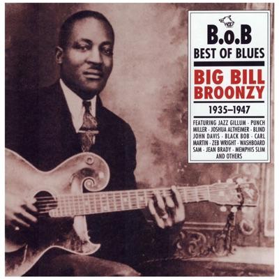 Best of Blues 2 Big Bill Broonzy - Big Bill Broonzy
