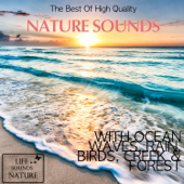 The Best Of High Quality Nature Sounds With Ocean Waves, Rain, Birds, Creek & Forest-Life Sounds Nature