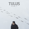 Tulus - Pamit artwork