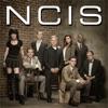 NCIS, Season 10 wiki, synopsis