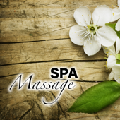 Spa Massage - Reiki, Spas Flutes Songs & Zen Relaxation Music, Native American Flute, Classical Tracks for Relax