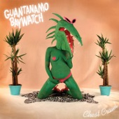Guantanamo Baywatch - We Came With Dottie