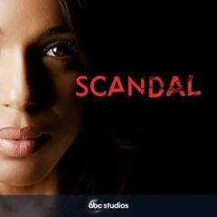 Scandal, Staffel 4