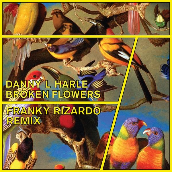 Broken Flowers (Franky Rizardo Remix) - Single