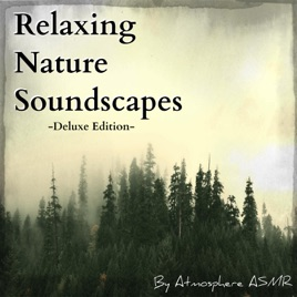 Relaxing Nature Sounds (Deluxe Edition) [Rain, Thunder