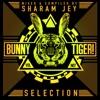 Bunny Tiger Selection Vol. 7