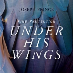 Find Protection Under His Wings