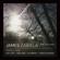 The Healing (Hot Chip Remix) - James Zabiela