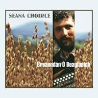 Seana Choirce by Breanndan O Beaglaoich on Apple Music