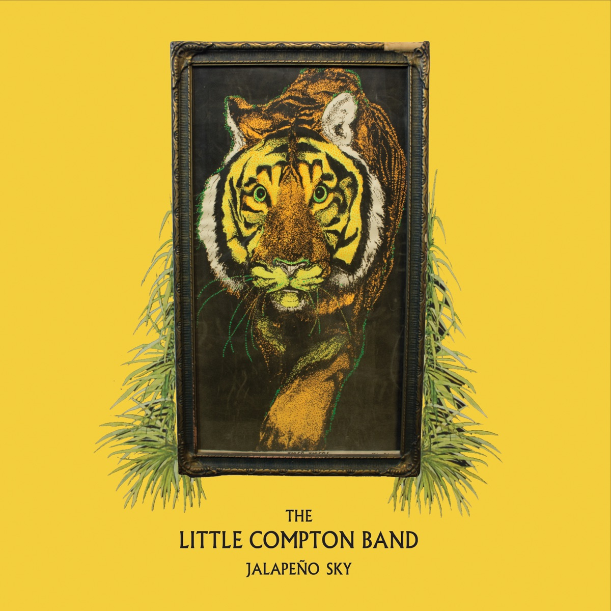 Jalapeño Sky The Little Compton Band CD cover