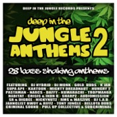 Criminal Sound - The Jungle