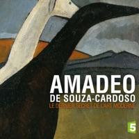 Télécharger Amadeo de Souza Cardoso, le dernier secret de l'art moderne Episode 1