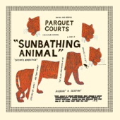 Parquet Courts - Uncast Shadow of a Southern Myth