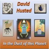 David Husted - In the Dust of This Planet
