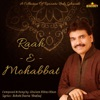 Raah e Mohabbat