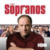 The Sopranos, Season 1 wiki, synopsis