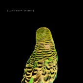 Andrew Bird - Heretics