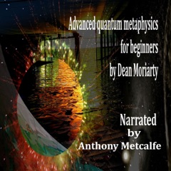 Advanced Quantum Metaphysics for Beginners: A Step Within (Unabridged)