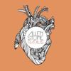 Radius (Deluxe Edition) - Allen Stone