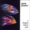 Gone Phishin A Bluegrass Tribute to Phish