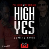 High Yes (feat. Zj Liquid) - Single