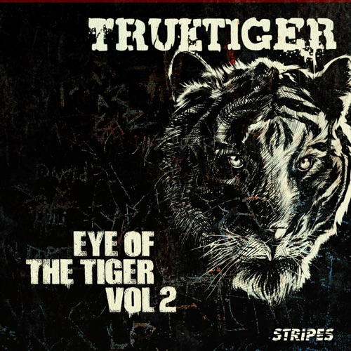 DOWNLOAD MP3: True Tiger - Put Your Bets On (Instrumental)