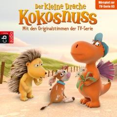 Der Drachengott / Der Wünsch-dir-was-Pilz / Der Ersatzspieler / Lauf, Kälbchen, lauf. Das Original-Hörspiel zur TV-Serie: Der Kleine Drache Kokosnuss 3
