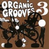 Organic Grooves - Banal Reality