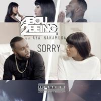 Sorry (feat. Aya Nakamura) - Single