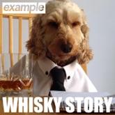 Whisky Story - Single