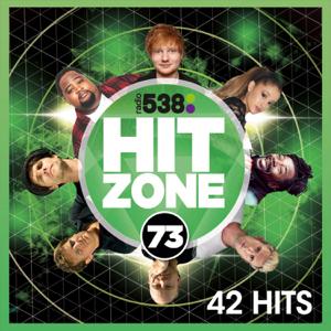 Verschillende artiesten - 538 Hitzone 73