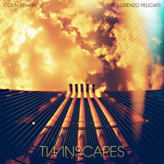 Twinscapes