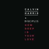 How Deep Is Your Love (Record Mix) - CALVIN HARRIS-DISCIPLES