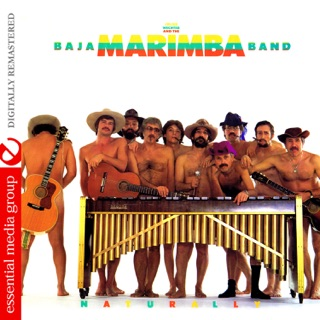 The Baja Marimba Band on Apple Music