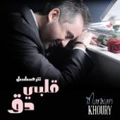 Albi Da Albi Da Series Marwan Khoury - Marwan Khoury
